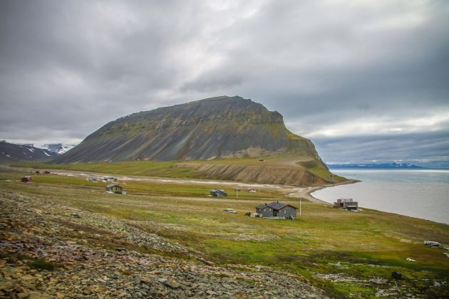 Svalbard Spitzbergák