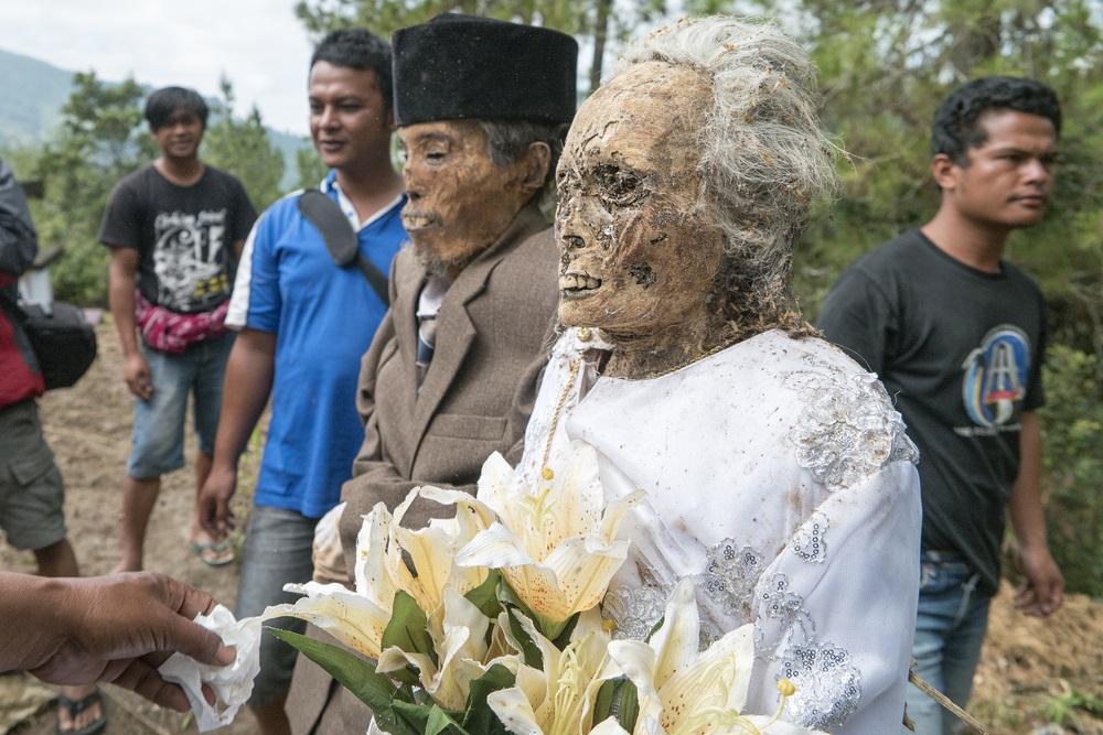 Halottak felöltöztetve Toraja Celebesz Indonézia