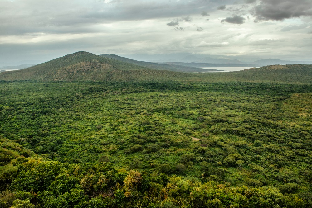 Omo folyó völgye Etiópiában Afrikában