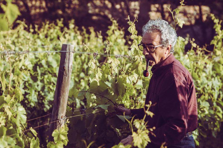 Mark Cassar máltai borász
