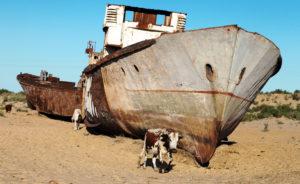 Az Aral-tó katasztrófája