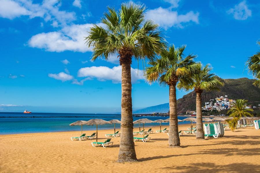 tenerife strand playa de las teresitas homok pálmafa