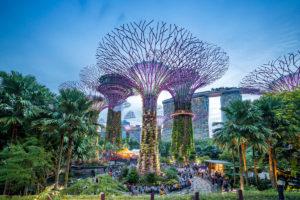 Szuperfák Szingapúrban